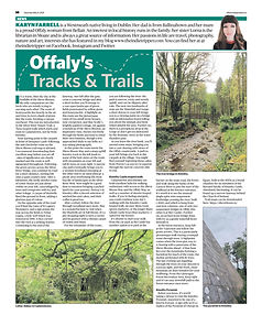 Offaly Indo 08.05.2021.jpg
