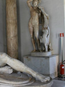 dying gaul capitoline museum.jpg