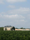 Vineyards Margaux in Medoc region 2.jpg