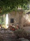 bicycles Luberon.jpg