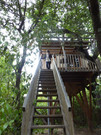 Treehouse Luberon Provence
