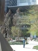 MoMA sculpture garden.jpg