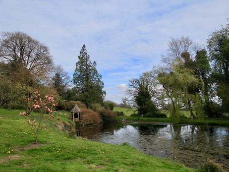 A garden of delights at Tullynally Castle