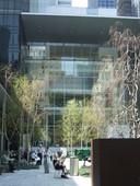 MoMA sculpture garden 3.jpg