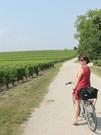 Cycling around vineyards Margaux 2.jpg