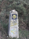 Shells Camino de Santiago