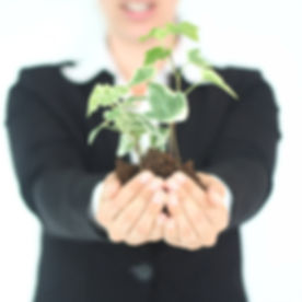 Plant Presentation_edited.jpg