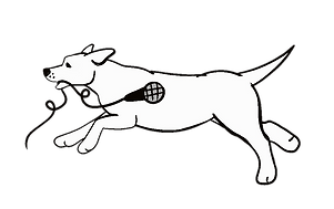 Dog png white body.png