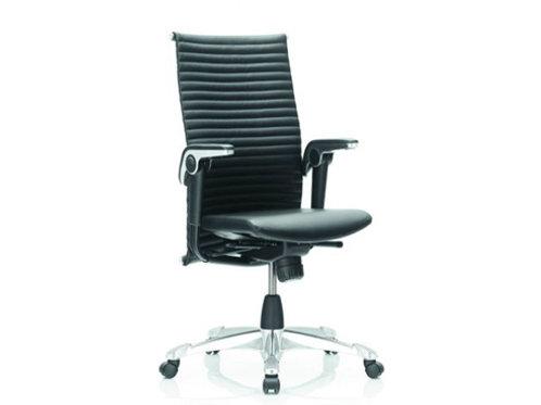 HÅG ergonomische stoel H09