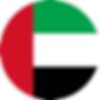 UAE_Flag.png
