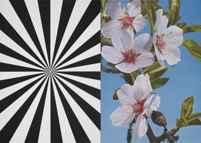 Exstacy Almond Blossom 31 (S), 2016