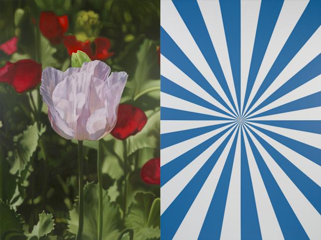 Afyon 3 and Blue Expander (L), 2012