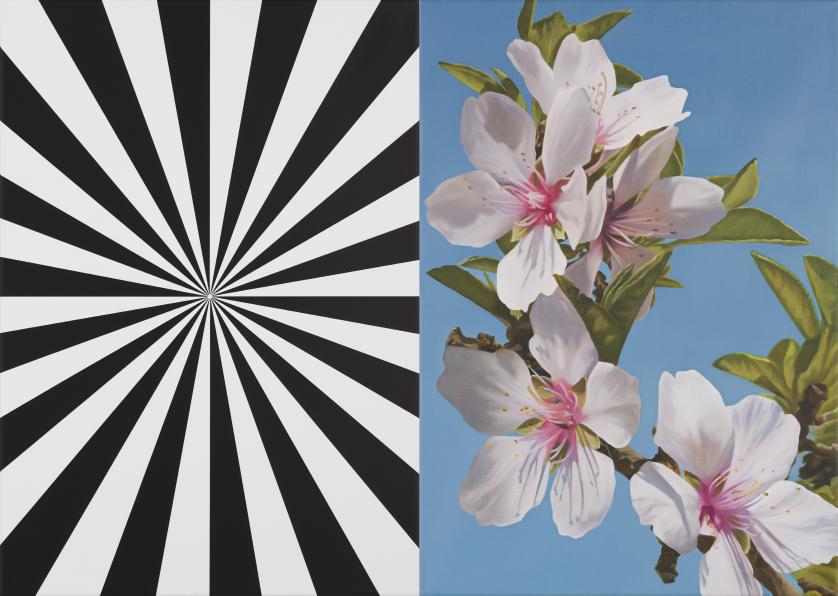 Exstacy Almond Blossom 30 (S), 2016