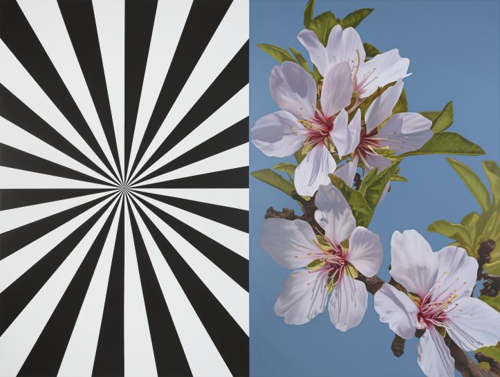 Exstacy Almond Blossom 30 (L), 2016