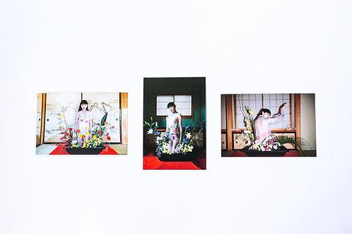 postcard「ikebana」