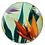 Thumbnail: HARVEST SEASON (SZ-CN3241)