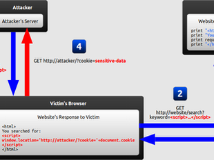 Web App Hacking, Part 9: Cross Site Scripting (XSS)