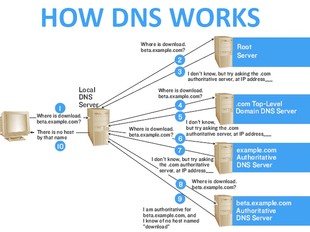 Network Basics for Hackers: Domain Name Service (DNS) and BIND. Theory, Vulnerabilities and Implemen