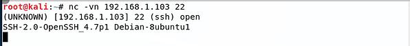 netcat open ssh.png