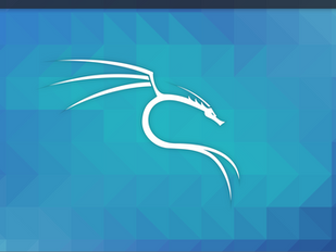 Getting Started with Kali Linux 2020