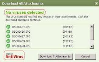 no virus.jpg