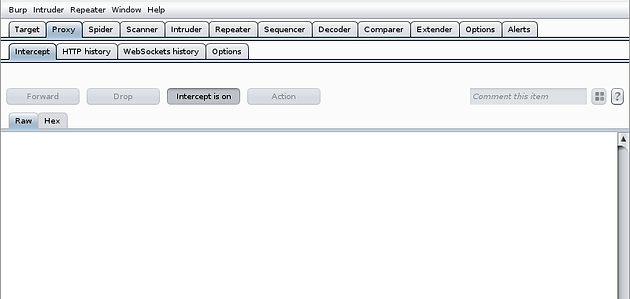 Online Password Cracking with THC-Hydra and Burp Suite