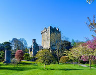 Blarney%20Castle_edited.jpg