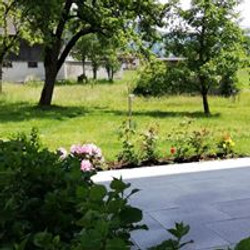 Garten 6