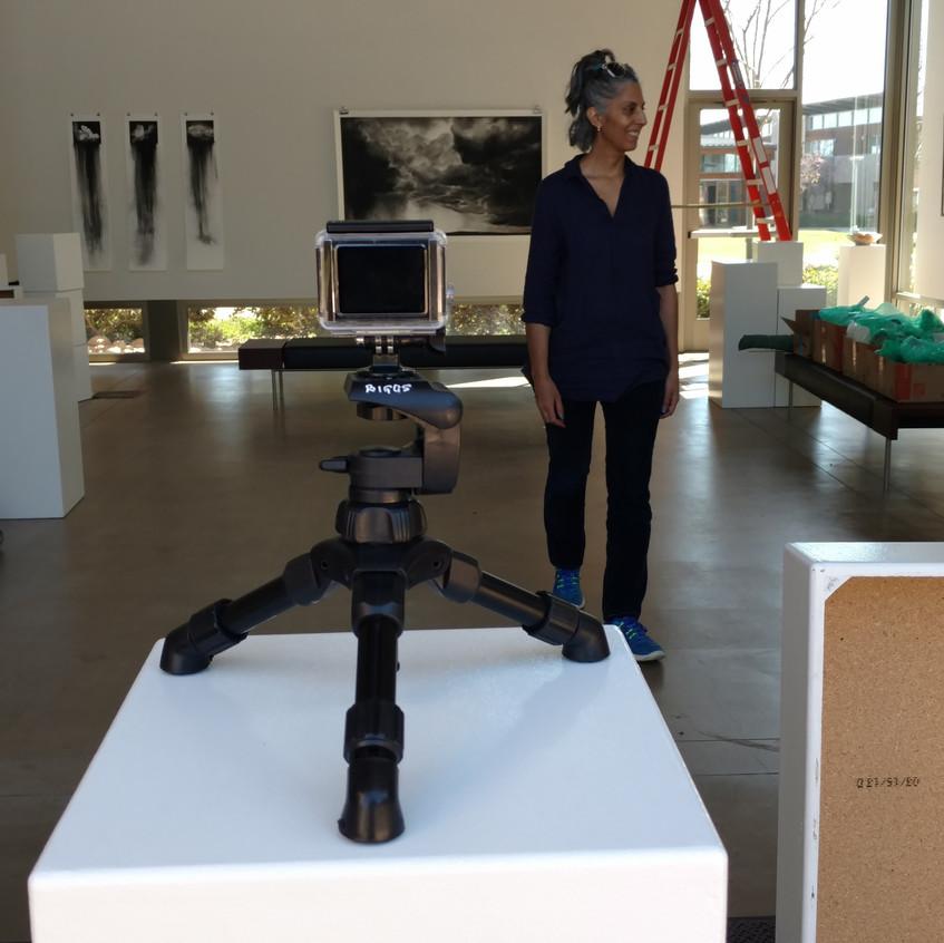 1Rose Gallery Installation