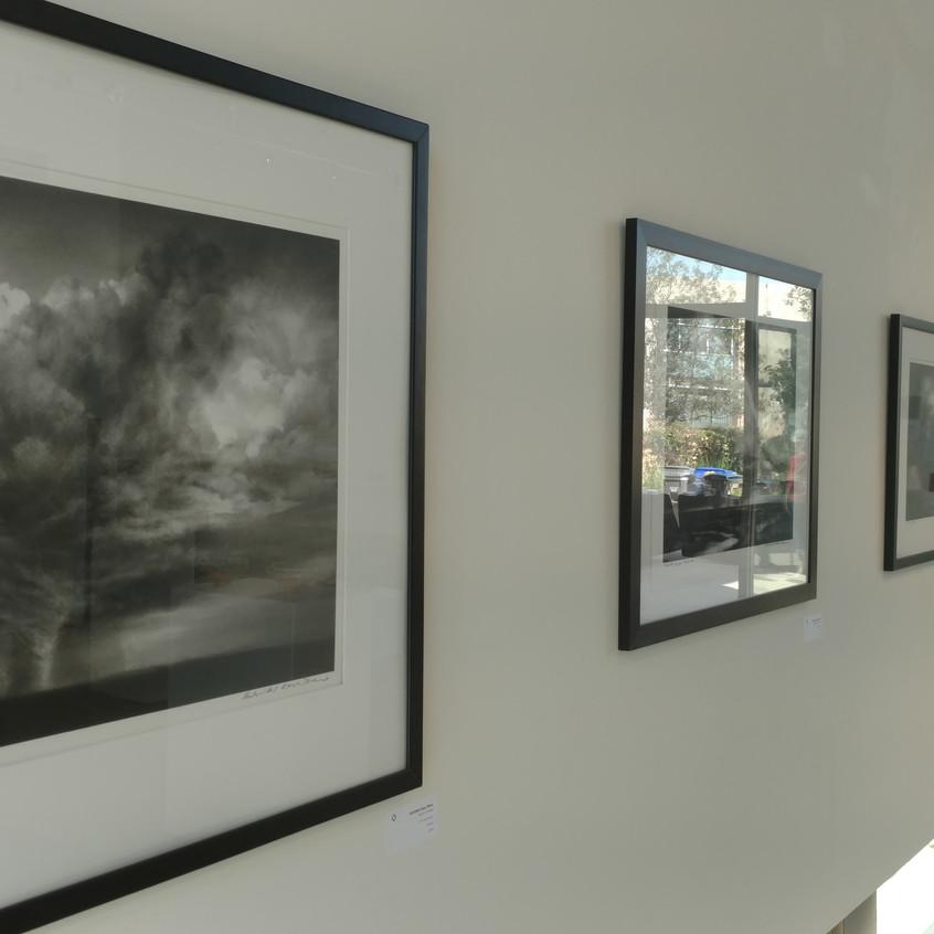 12Rose Gallery Installation