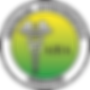 logo-head aha_edited.png