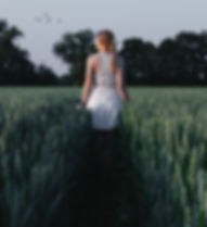 blonde-hair-cropland-crops-1188745.jpg