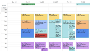 Fostering Your Time - Scheduling Snapshot