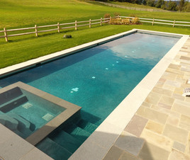 Lap Pool and Spa