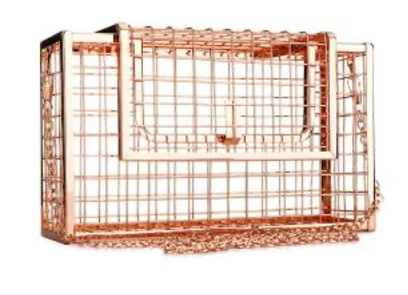 Beautifully Caged Purse