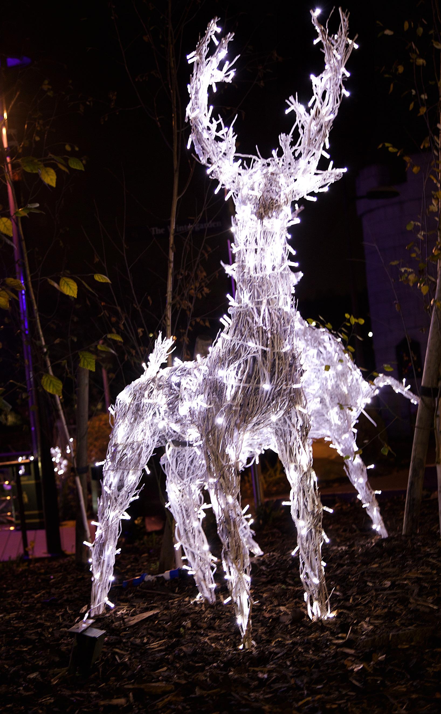 Light-Up Reindeer