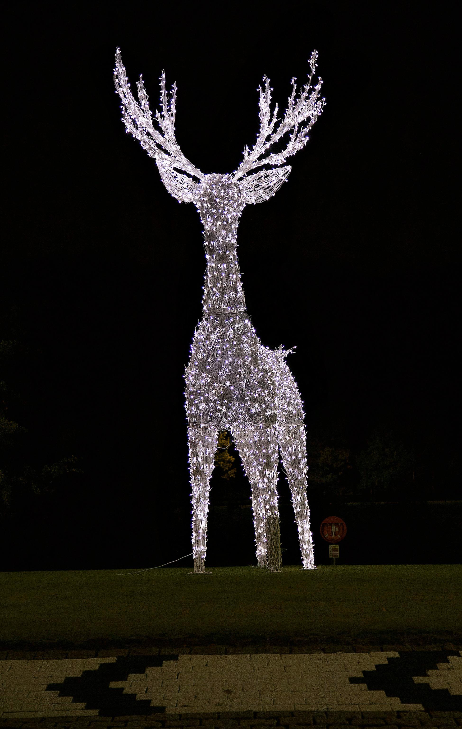 Giant Light-Up Reindeer