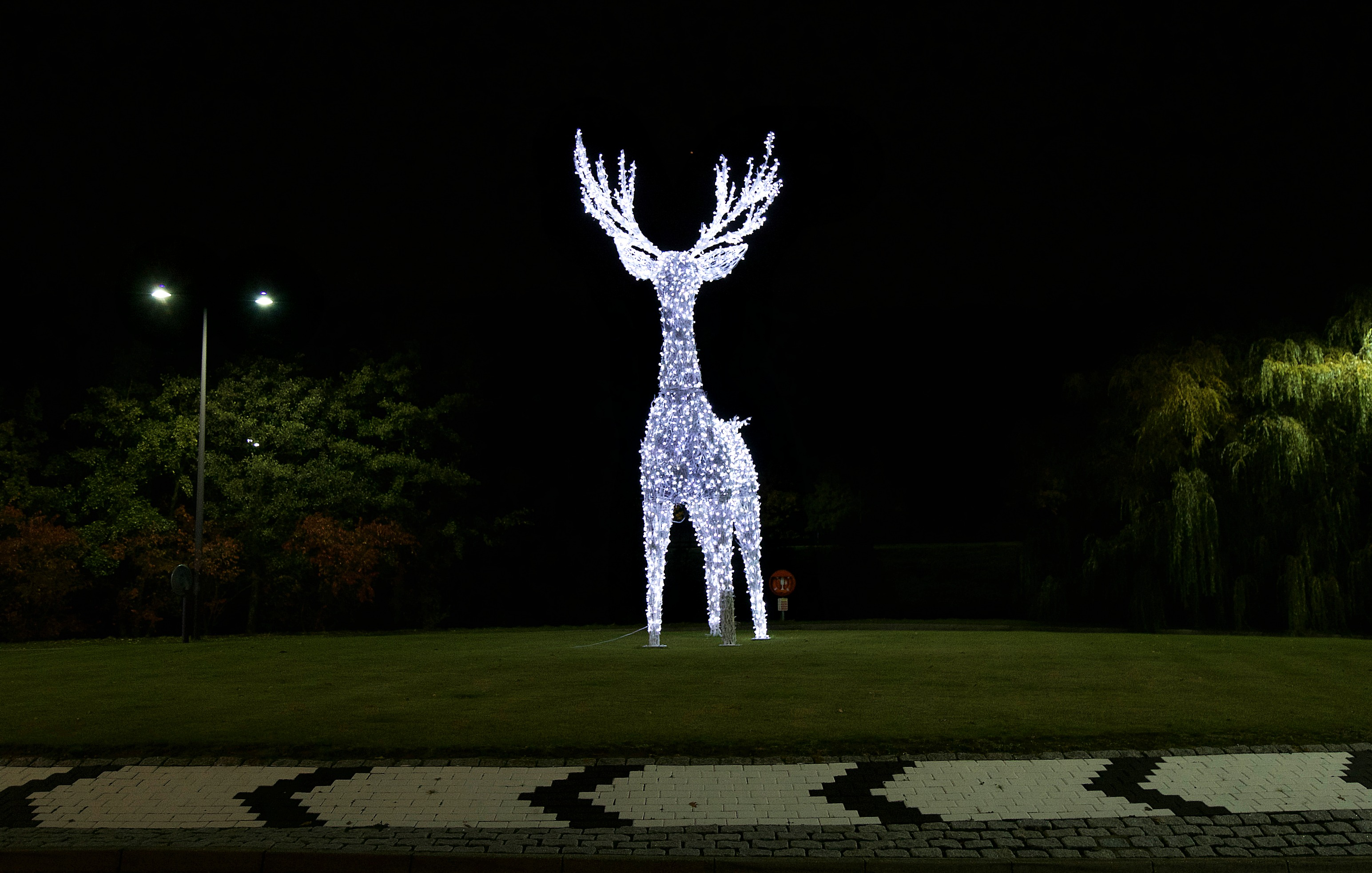 Light-up Reindeer Decoration