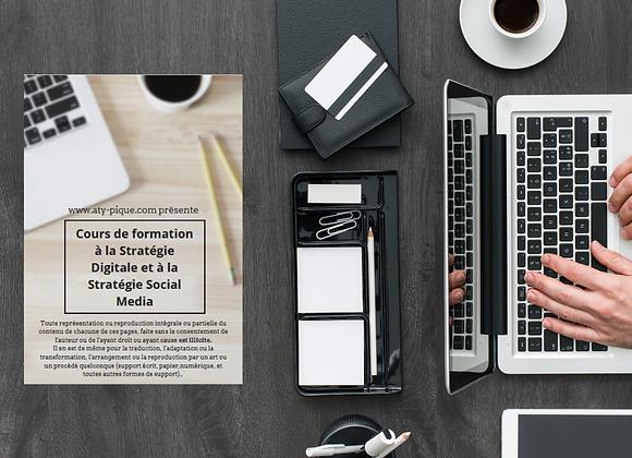 Cours Stratégie digitale et social media