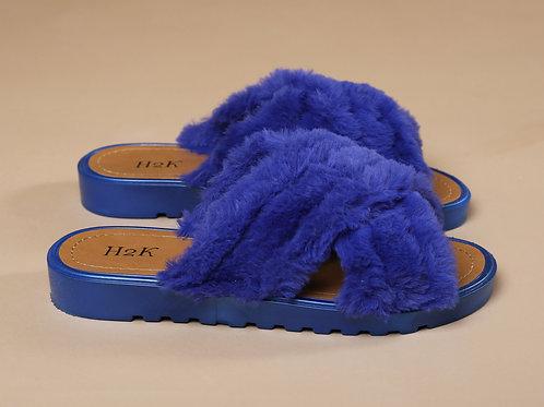 Blueberry Slides