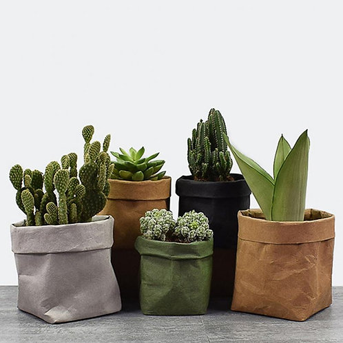 Mini Succulents  Washable Kraft Paper Planter Pot