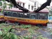 Cyclone damage.jpeg