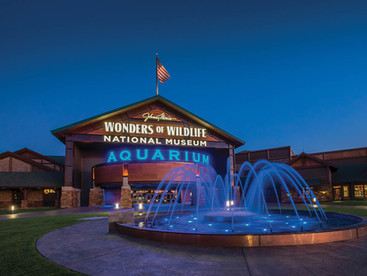 Wonders of Wildlife—Great Oceans Hall