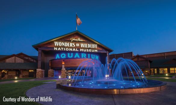 Wonder's of Wildlife National Museum & Aquarium Wins Best New Attraction