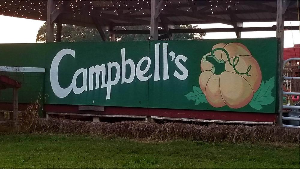 Campbells Maze Daze