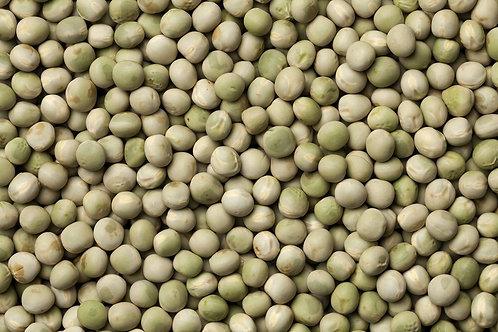 Icicle Peas