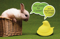 Easter Card EC2111