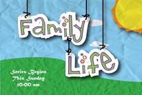 Life TV Card LTV2115