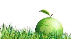 renovation ecologique - habitat