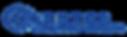 CHSSTL Logo
